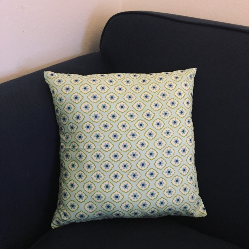 Pillow I Made in Sewing Class, October 2015