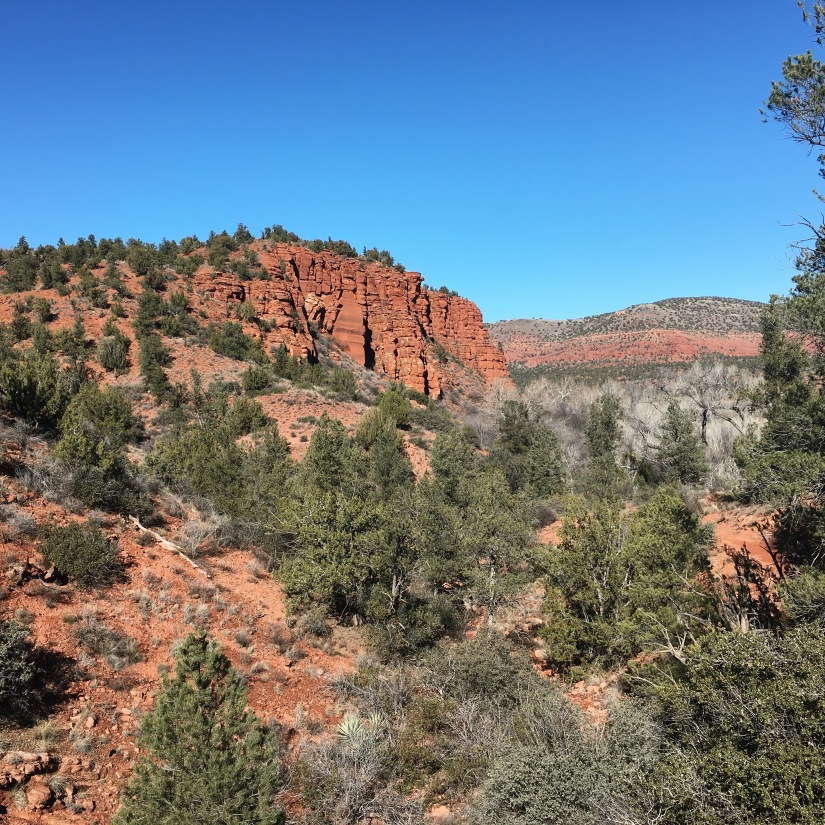 Hiking in Red Rock State Park near Sedona