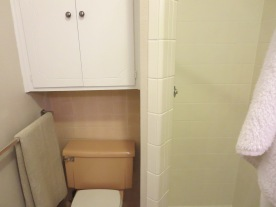 toilet and tiny shower in bathroom