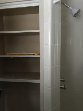 master bathroom demo, day 1
